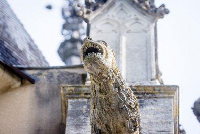 Gargouille du château de Meillant