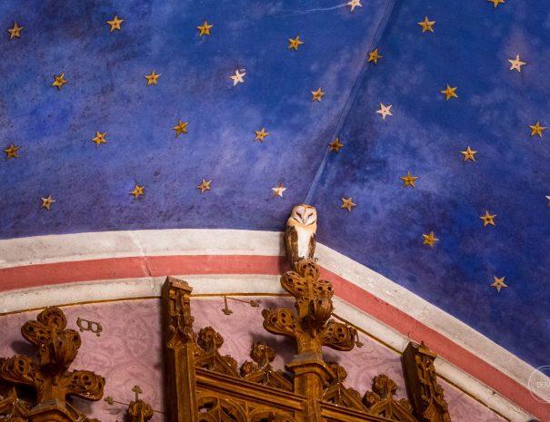 chouette au plafond de la chapelle de Meillant